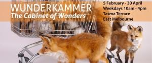 Wunderkammerbanner-weekdays960w
