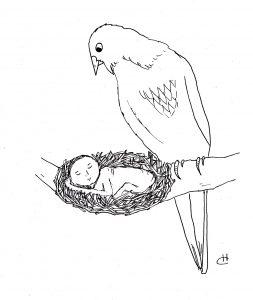 nest-illustration-friday